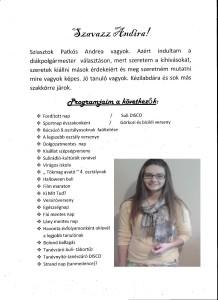 PAtkós Andrea kampány